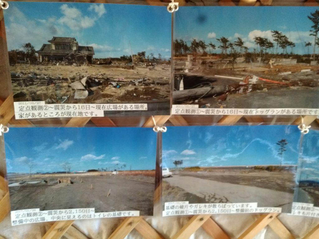 岩沼ひつじ村 震災から復興の歴史