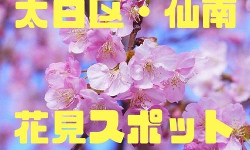 【宮城県南・太白区】花見スポット30選|穴場満載!おすすめの桜は?