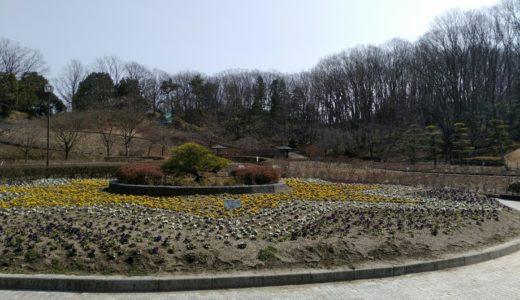 公園レポ - 亘理公園|花畑や子供の遊び場でのんびり散歩