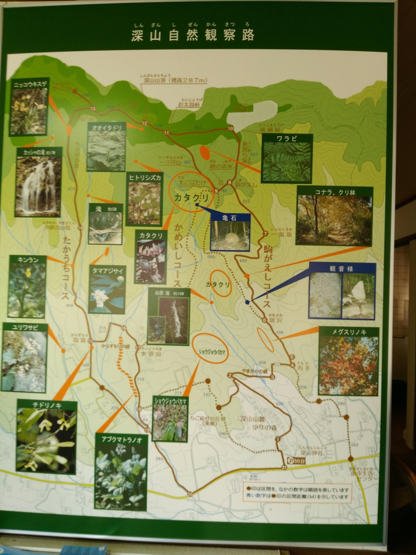 山元町 菱沼の里 深山自然観察路