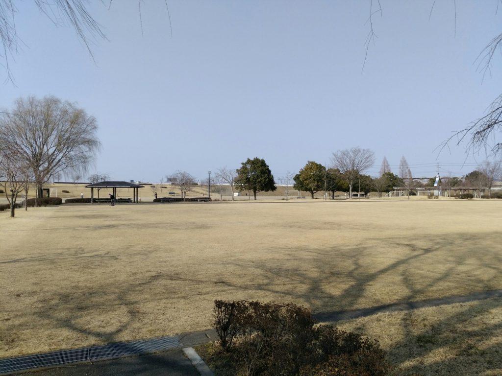 角田中央公園 芝生広場
