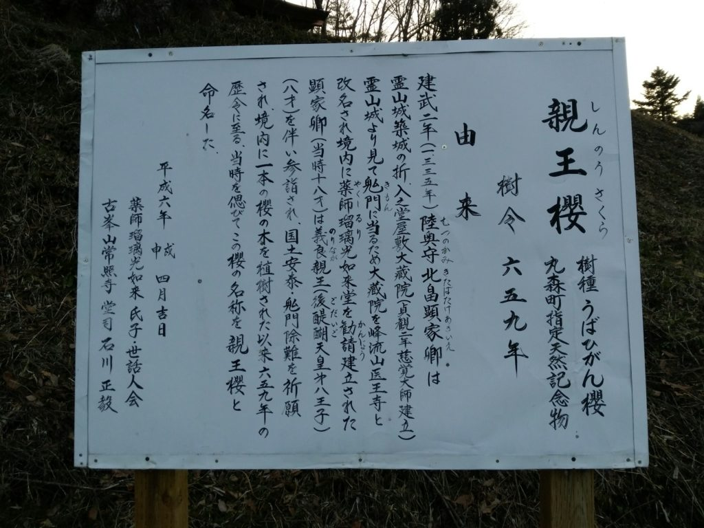 丸森町 親王桜 解説