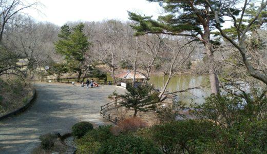 【公園レポ】岩沼市 朝日山公園|野鳥や渡り鳥と美しい風景