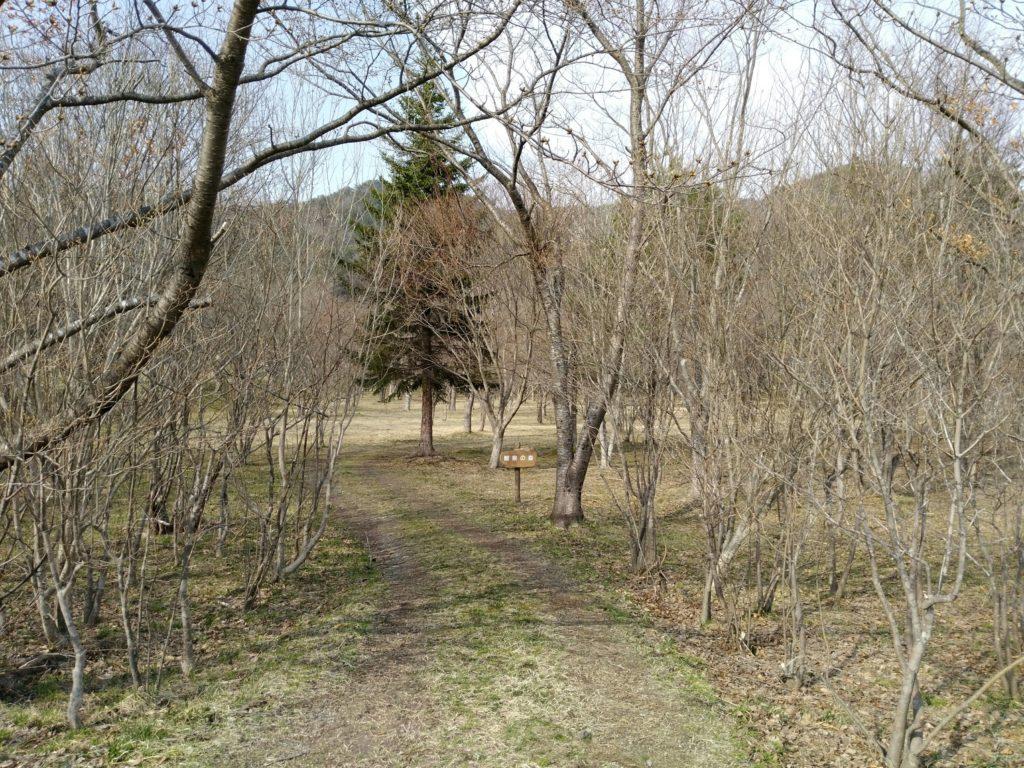七ヶ宿自然休養公園 観察の森