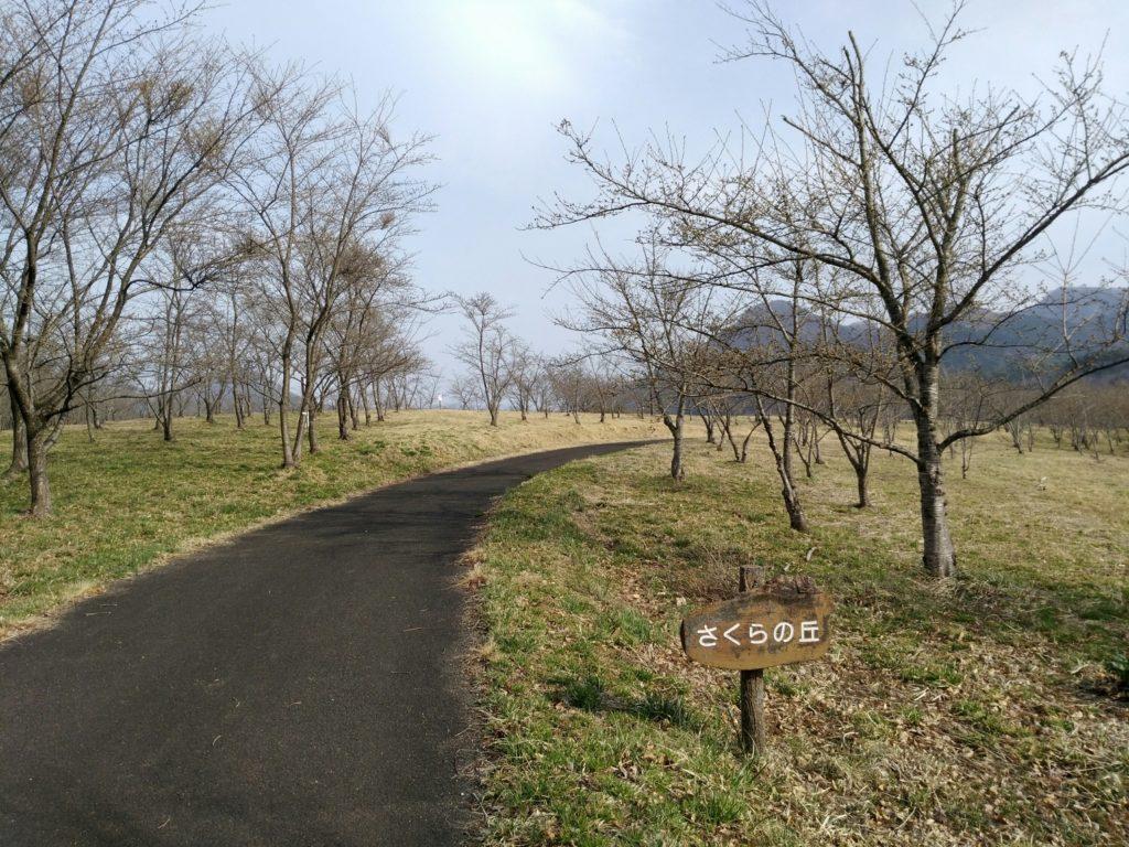 七ヶ宿自然休養公園 桜の丘