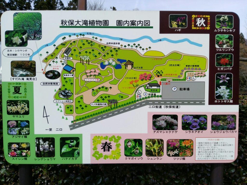 仙台市秋保大滝植物園 案内図 マップ