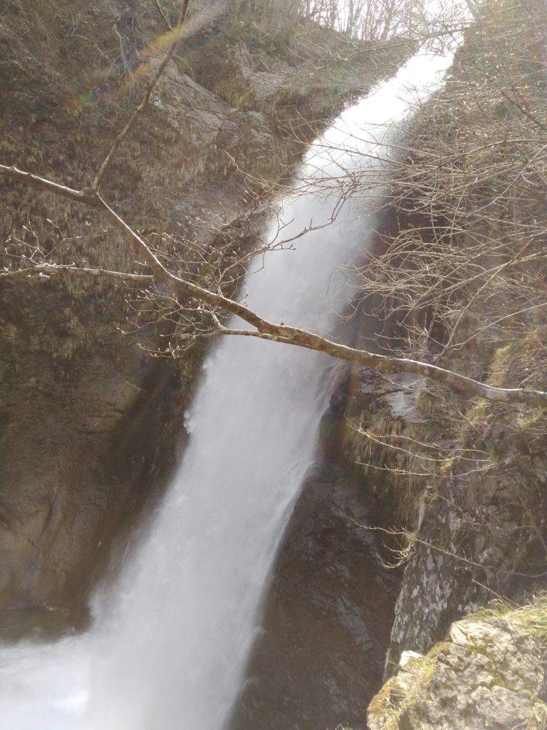 真横からの秋保大滝(春)