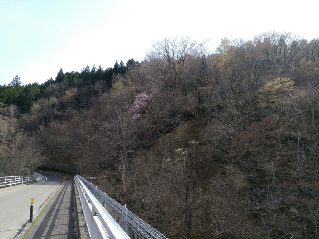 秋保大滝の不動滝橋