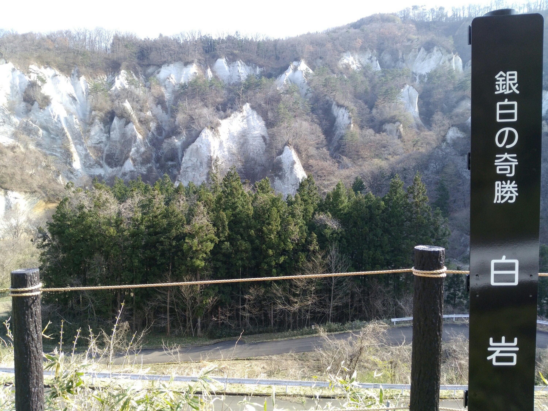 銀白の奇勝 白岩 桜はどこ?