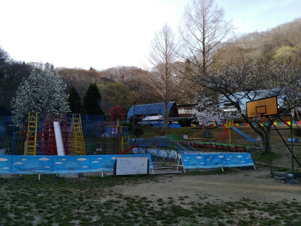 秋保森林スポーツ公園の桜