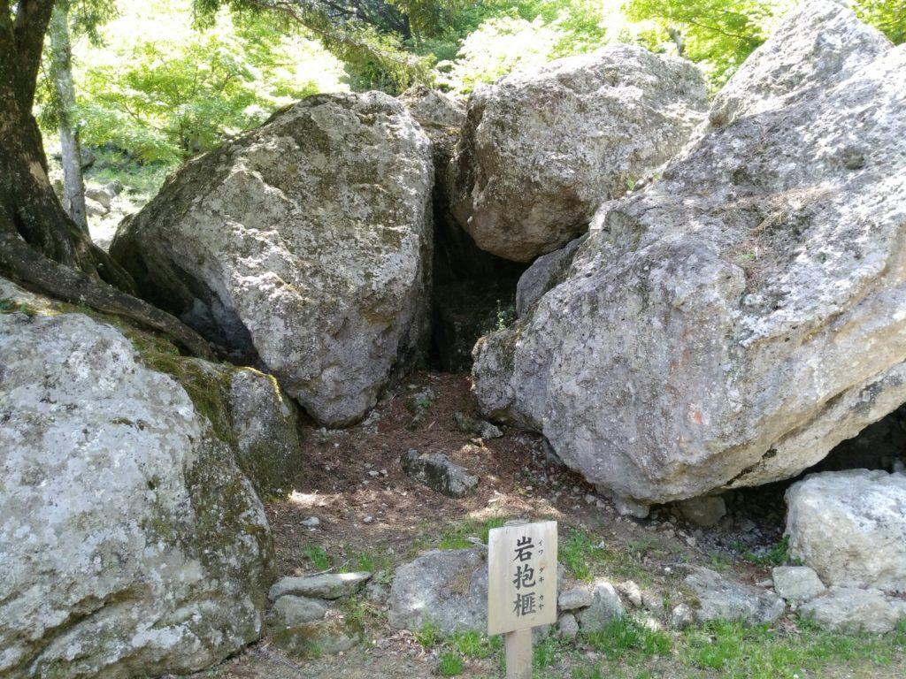 秋保 天守閣自然公園 岩抱榧