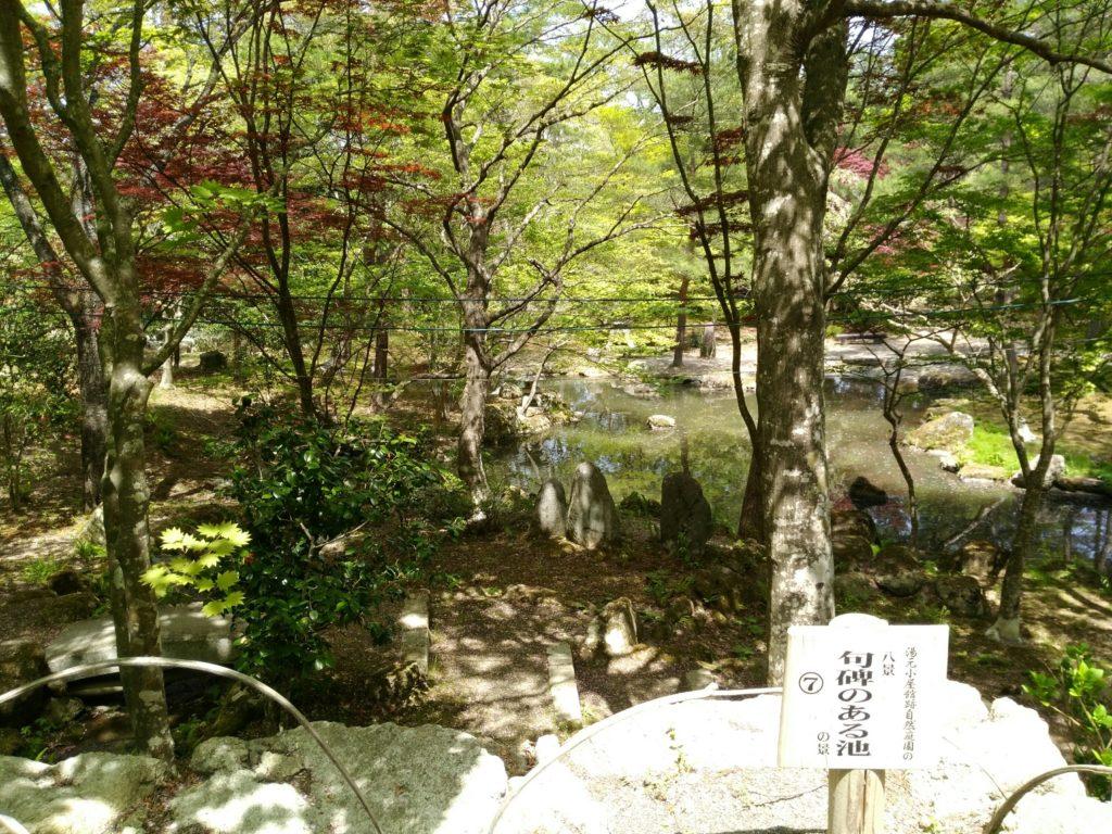 秋保 天守閣自然公園 句碑のある池の景