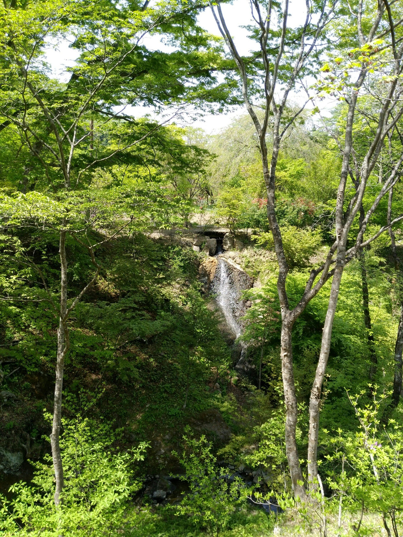 秋保 天守閣自然公園 滝