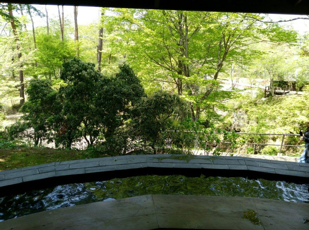 秋保 天守閣自然公園 足湯からの景色