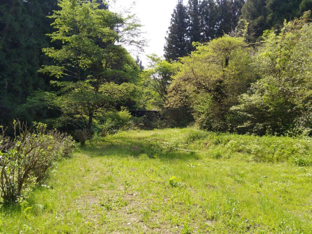 入りの坊滝への道中