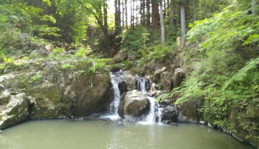 角田市 入の坊観光|入の坊滝・馬喰滝・石抱欅・根性の杉など