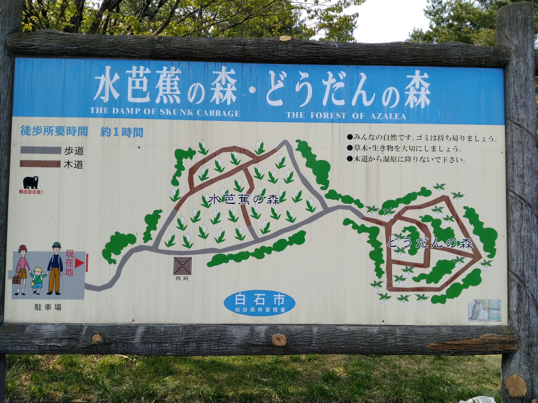 水芭蕉の森 どうだんの森 マップ