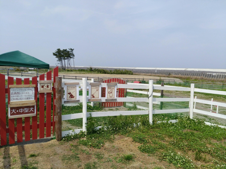 岩沼 ひつじ村 ドッグラン 大・中型犬 入口