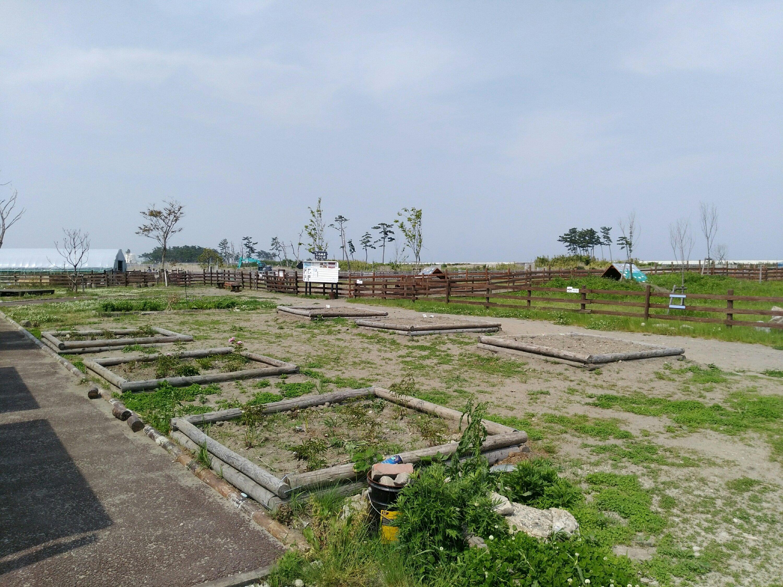 岩沼 ひつじ村 花壇