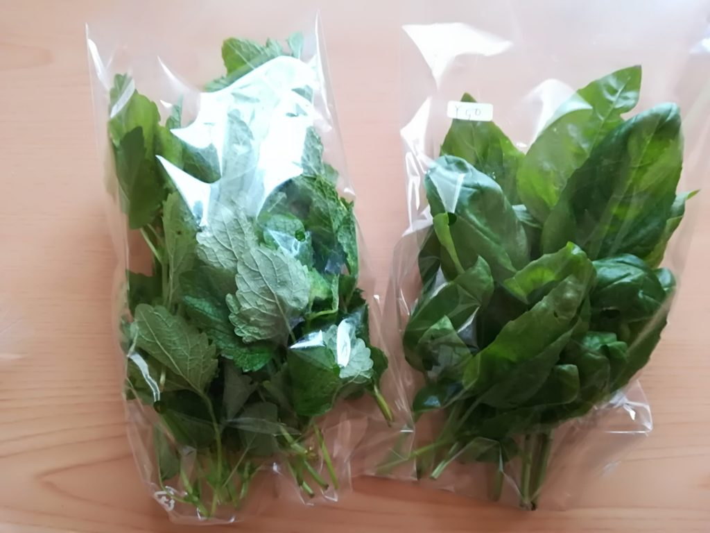 産直野菜のハーブ