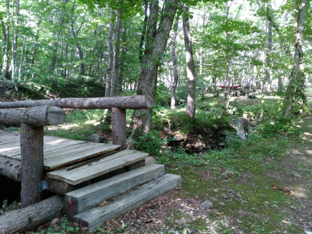 グリーンパーク不忘のマイナスイオンの森