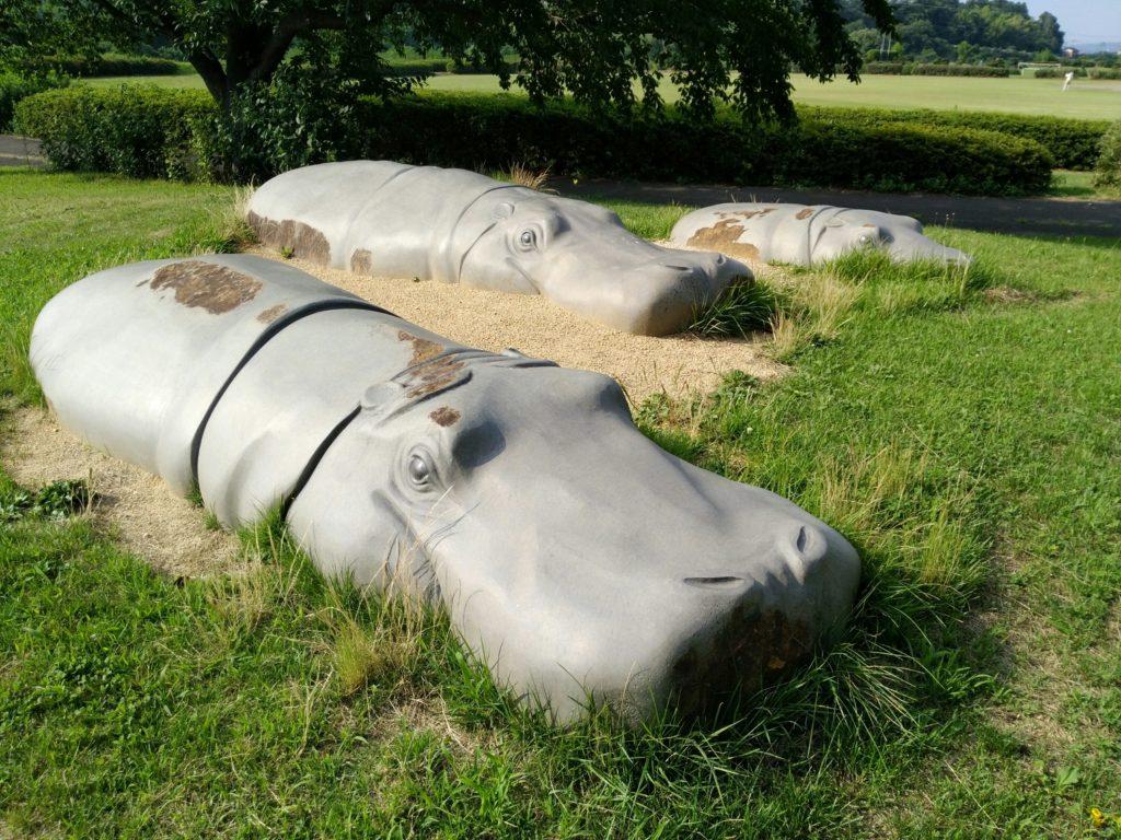 白石川緑地公園のカバの乗り物