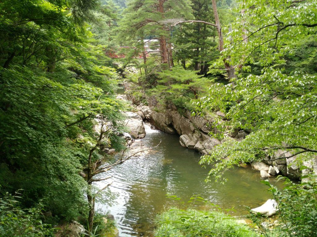 不動尊公園 内川の渓谷2