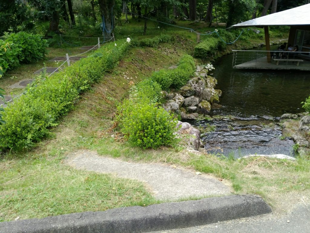 天水舎の脇道