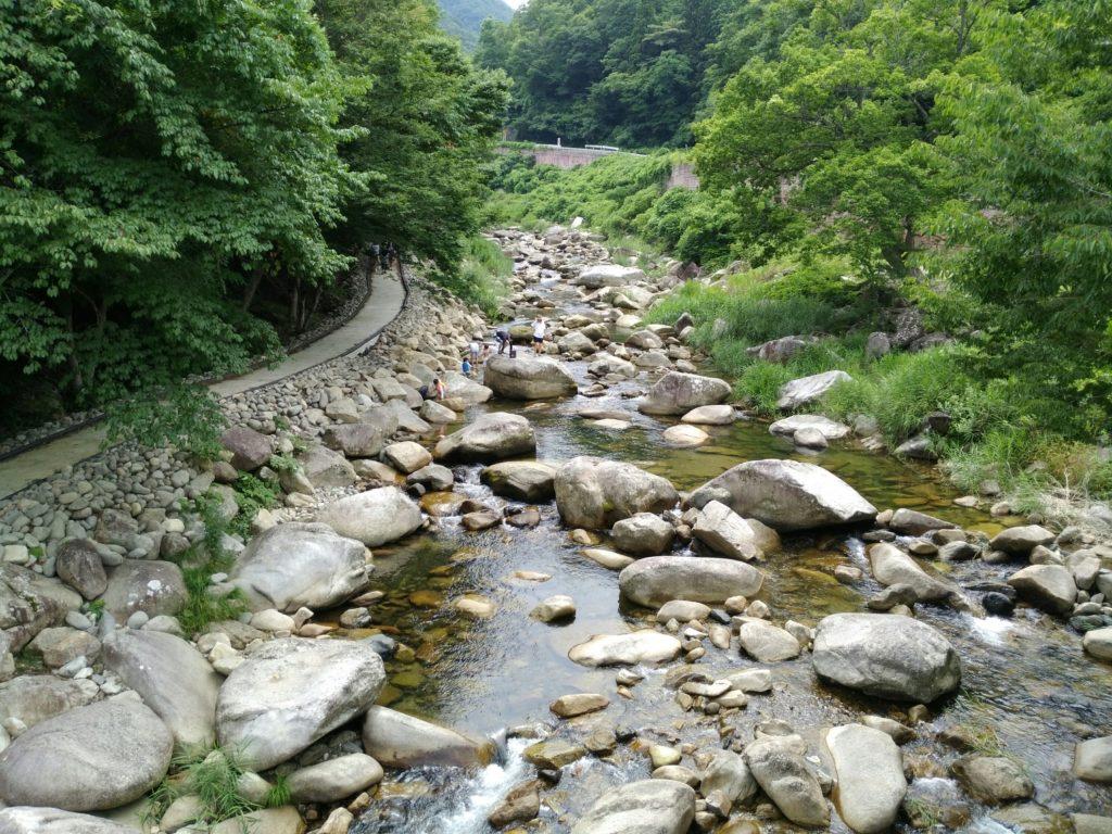 内川の上流
