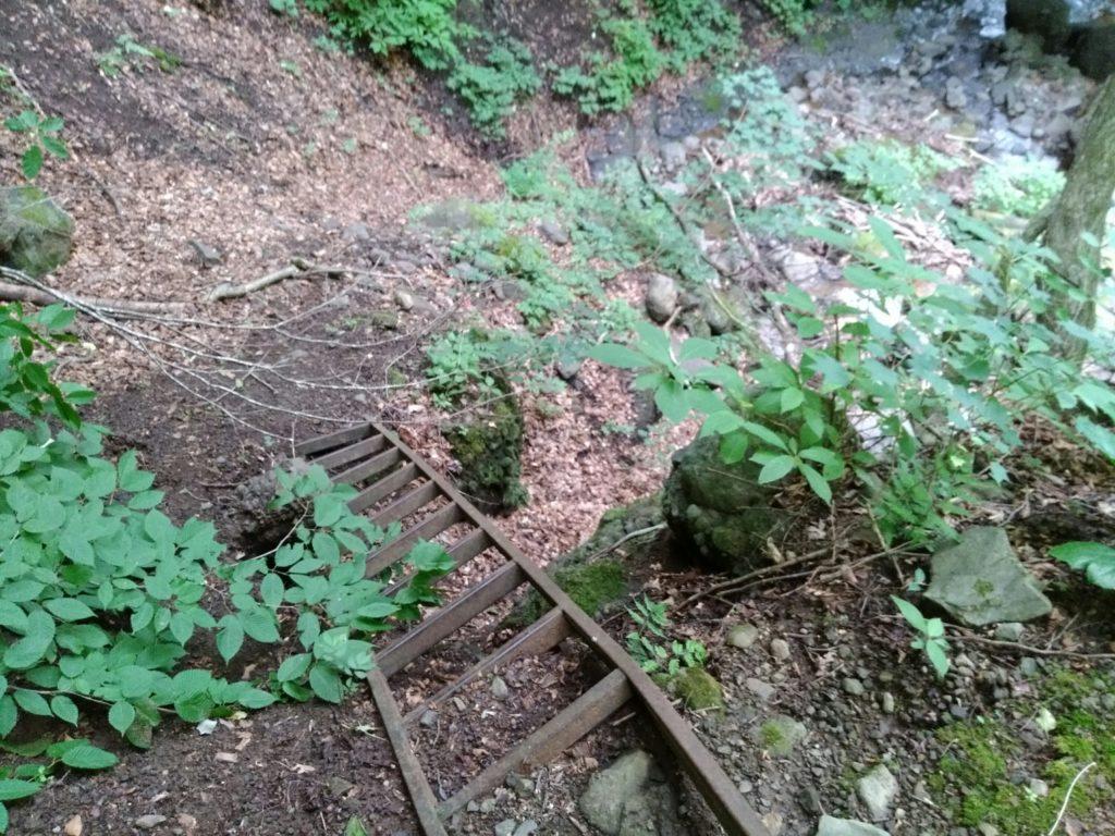帰り道の梯子