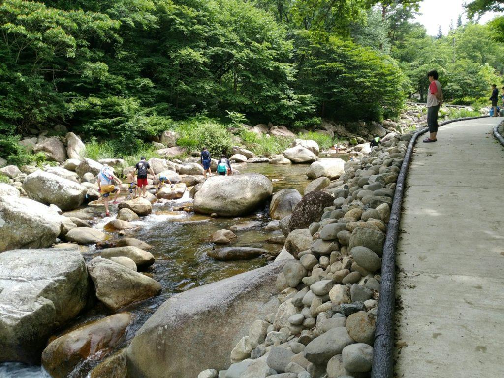 内川の中流はアスレチックポイント