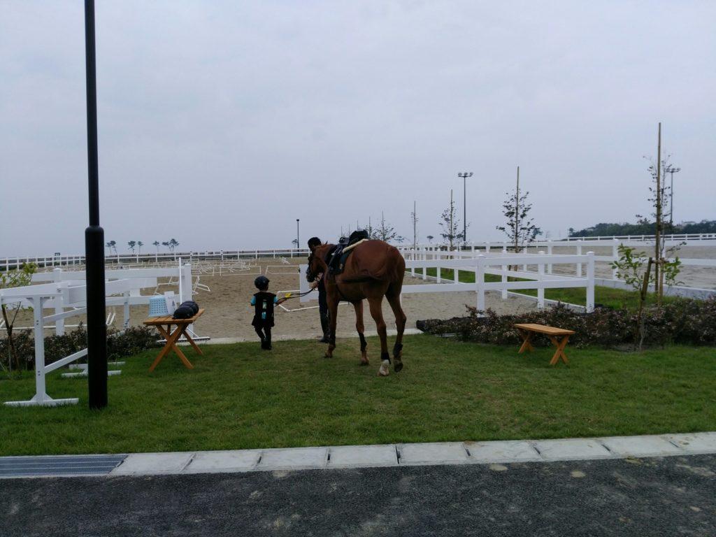 若林区の馬術場で乗馬体験
