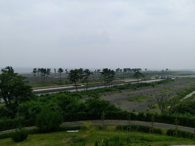 展望台からの景色(海側)