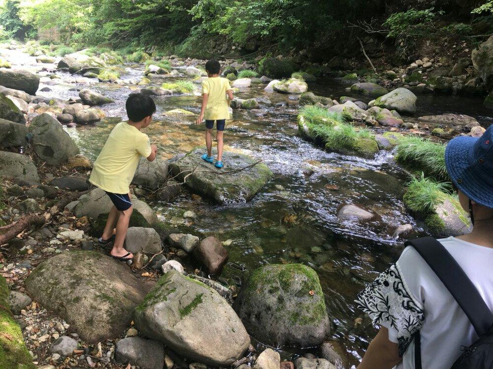 るぽぽの森で川遊び
