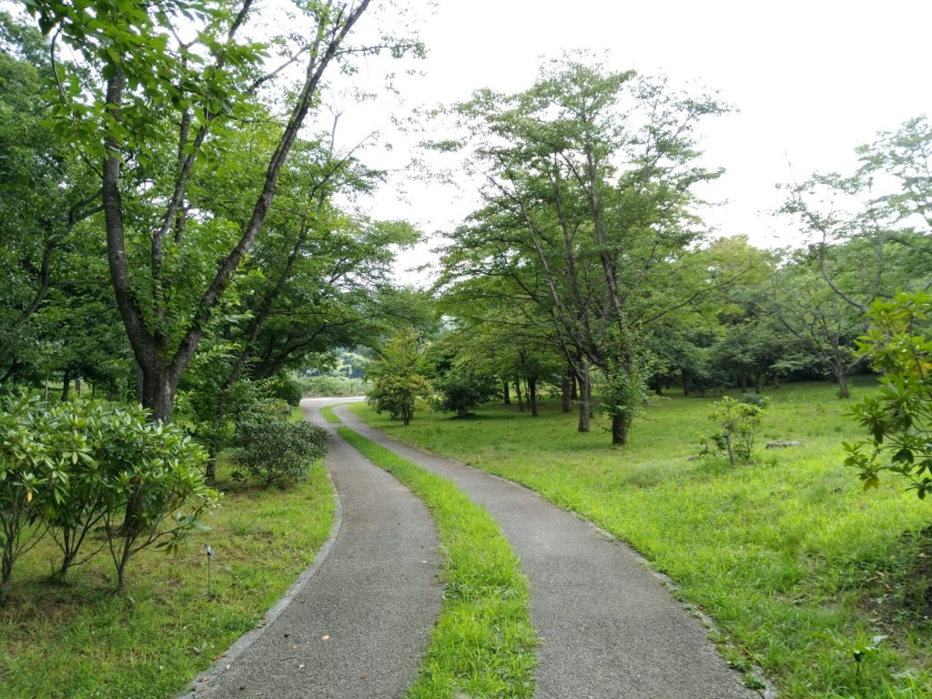 みちのく杜の湖畔公園の花木園