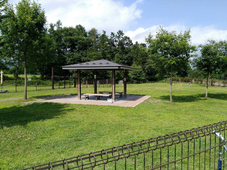 川崎町みちのく公園ドッグラン