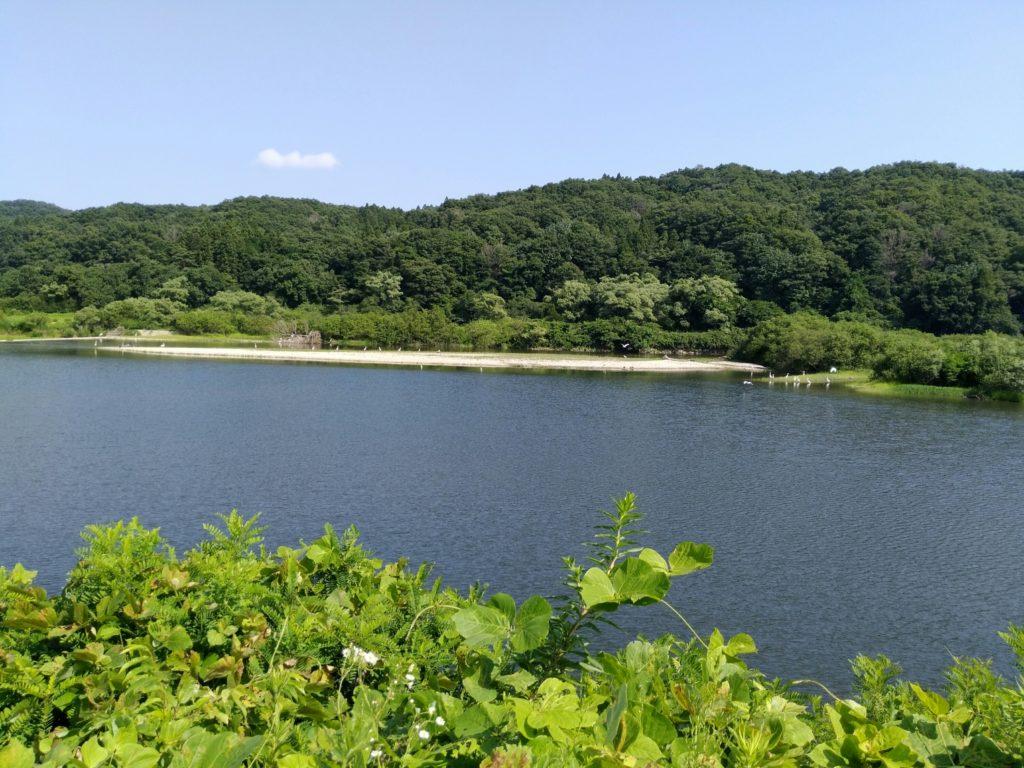 エコキャンプみちのく近くの北川
