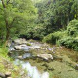 るぽぽの森の北川で釣り