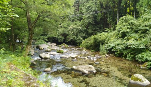 【体験レポート】川崎町 るぽぽの森|笹谷オートキャンプ場&るぽぽかわさき