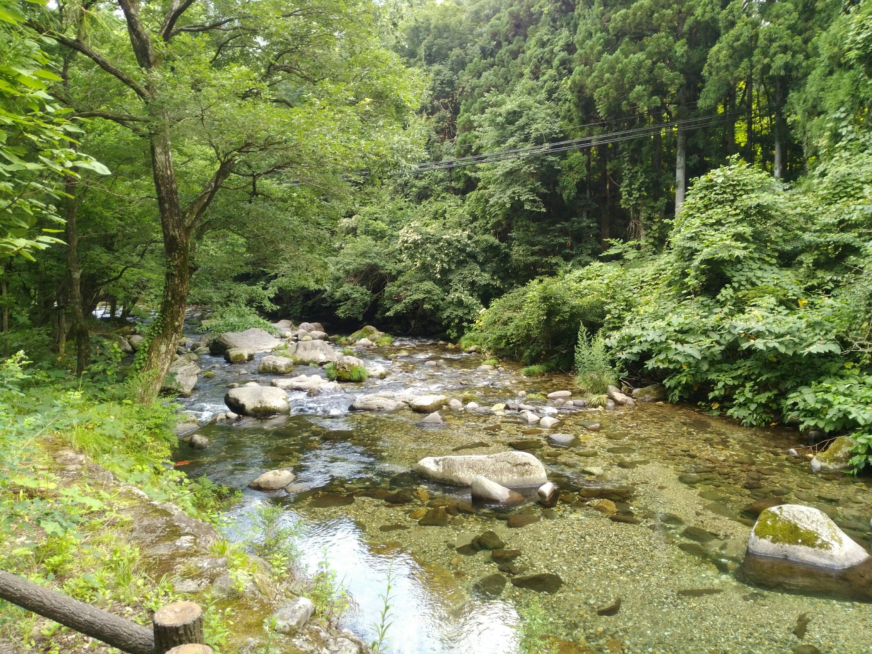 るぽぽの森 笹谷オートキャンプ場で川遊びと釣り