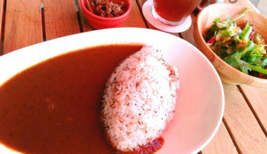 【食レポ】川崎町支倉の「カカオ亭」でカカオカレー!