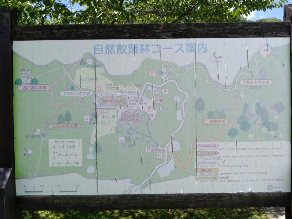 自然散策林 マップ