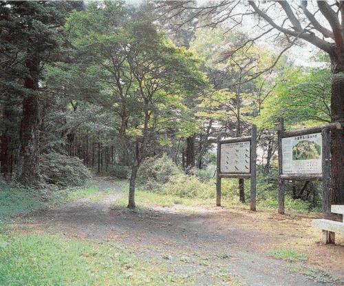 角田市 斗蔵山