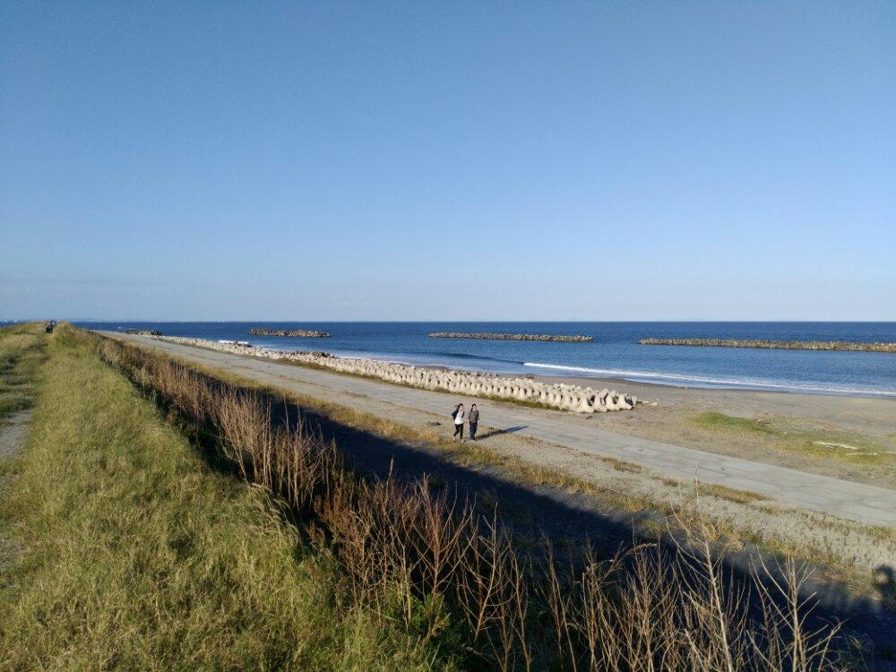 荒浜海岸ビーチ