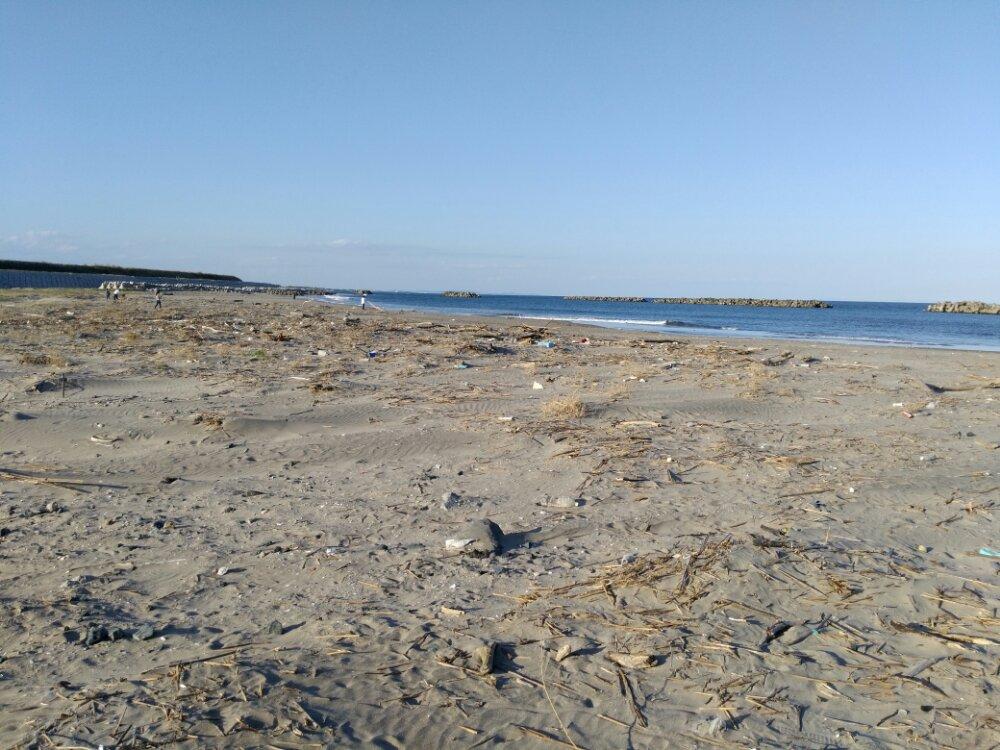 荒浜海岸 砂浜