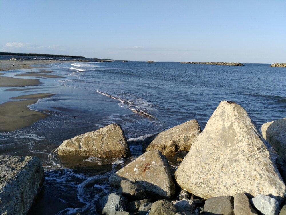 荒浜海岸 岩