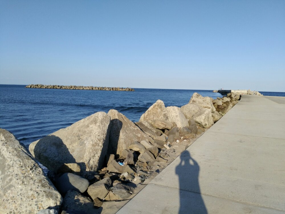 荒浜海岸 埠頭