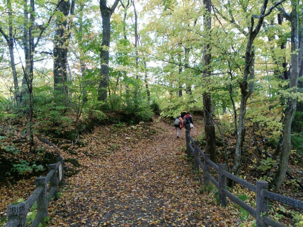 長老湖の遊歩道