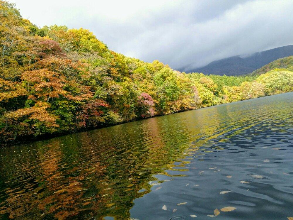 長老湖の美しい紅葉