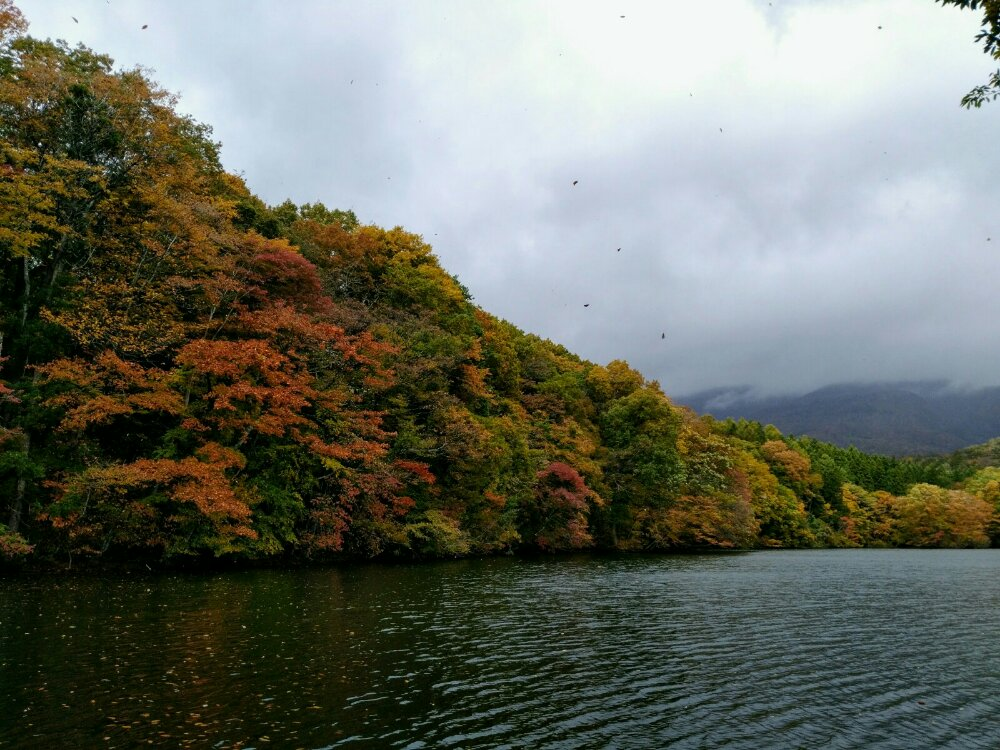 落ち葉が舞う長老湖